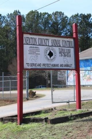 Image of Newton County Animal Control